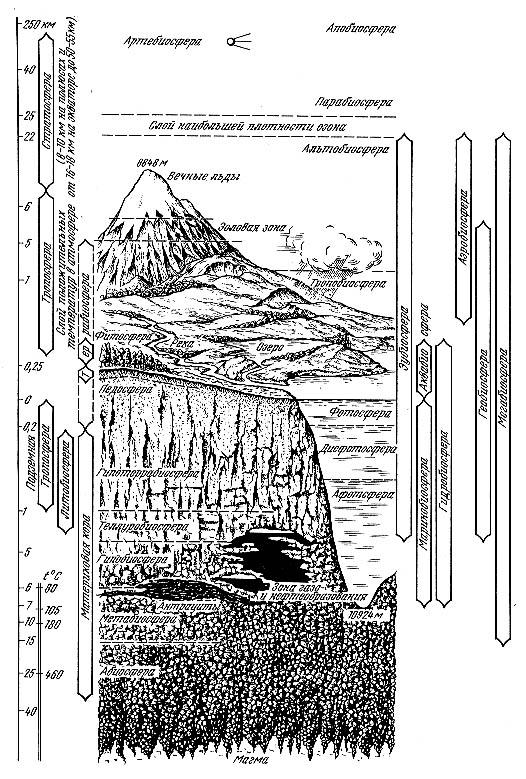 Рис. 2.1. Строение биосферы