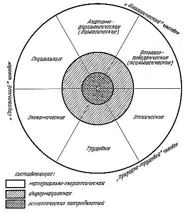 Схема потребностей человека.