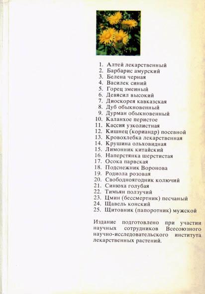 Картинки с названиями растений в природе