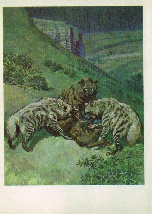 http://www.sivatherium.narod.ru/postcard/redbook3/pic_08.jpg
